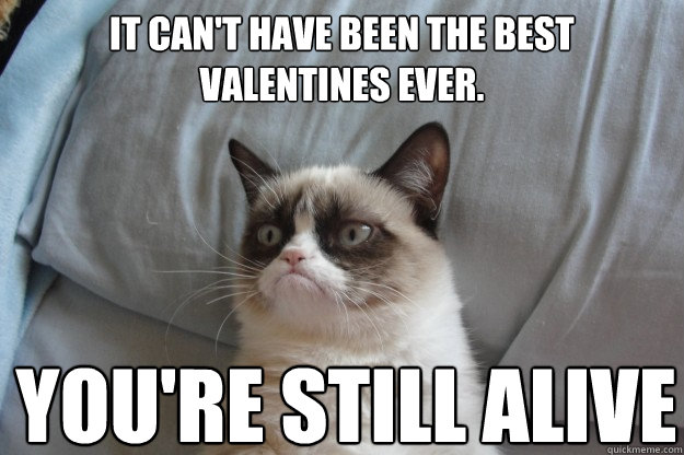 It can't have been the best valentines ever. You're still alive - It can't have been the best valentines ever. You're still alive  GrumpyCatOL