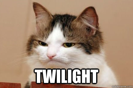 twilight -  twilight  Highly Unimpressed Cat