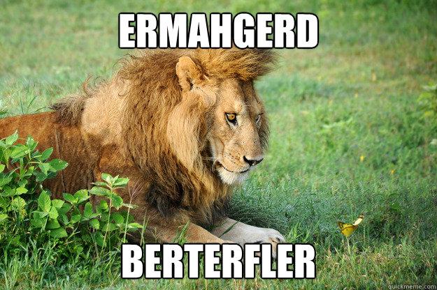 ermahgerd BERTERFLER - ermahgerd BERTERFLER  ermahgerd berterfler