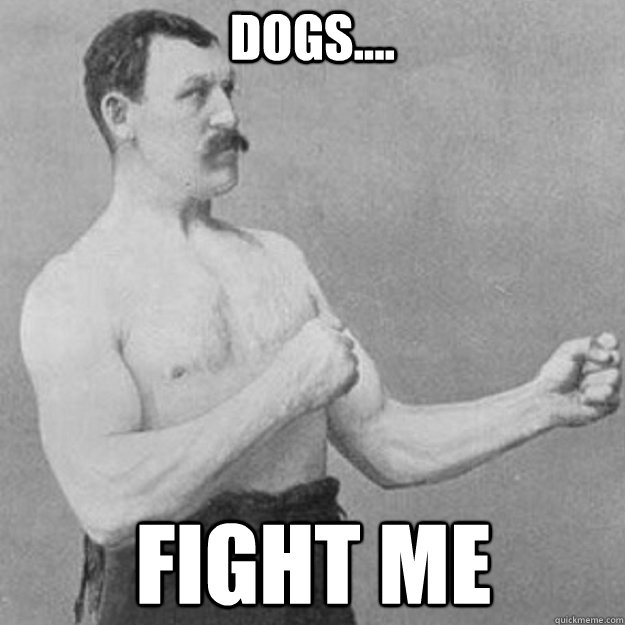 dogs.... fight me  - dogs.... fight me   overly manly man
