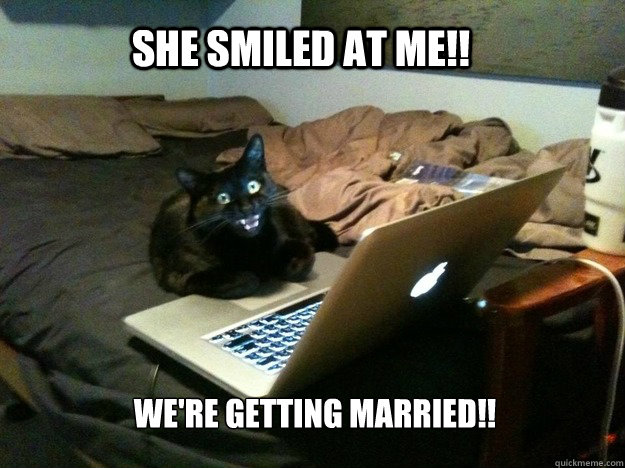 She smiled at me!! We're getting married!! - She smiled at me!! We're getting married!!  excited computer cat