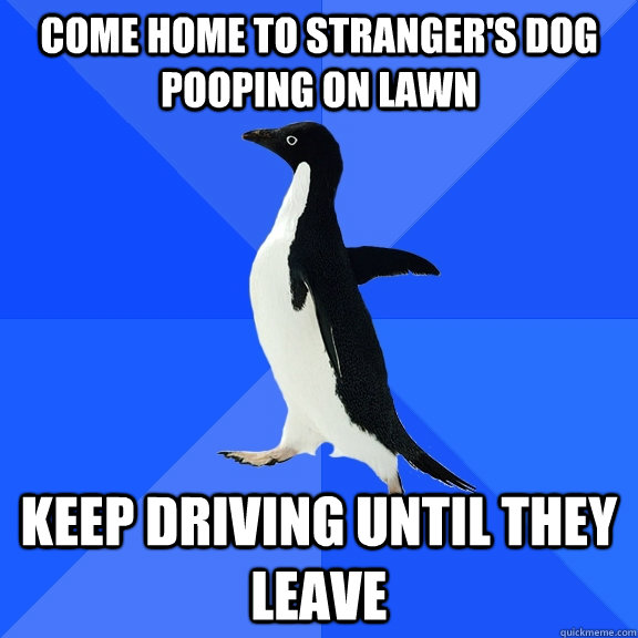 Come home to stranger's dog pooping on lawn keep driving until they leave - Come home to stranger's dog pooping on lawn keep driving until they leave  Socially Awkward Penguin