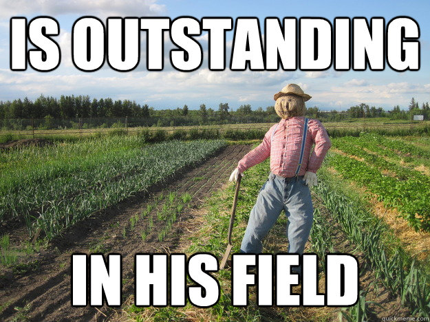 is outstanding in his field - is outstanding in his field  Scarecrow
