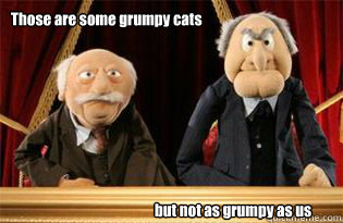 Those are some grumpy cats but not as grumpy as us - Those are some grumpy cats but not as grumpy as us  UMB Statler and Waldorf