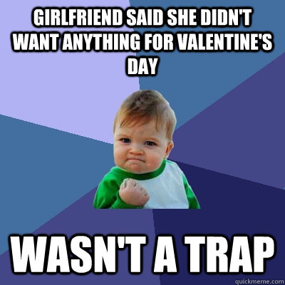girlfriend said she didn't want anything for valentine's day wasn't a trap - girlfriend said she didn't want anything for valentine's day wasn't a trap  Success Kid