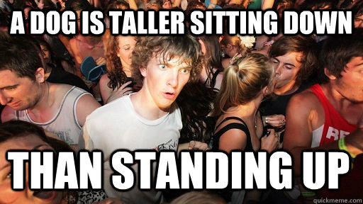 A dog is taller sitting down  than standing up