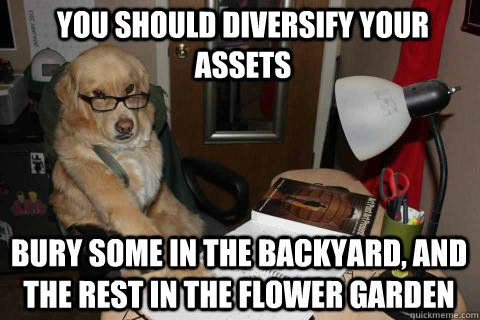 You should diversify your assets Bury some in the backyard, and the rest in the flower garden - You should diversify your assets Bury some in the backyard, and the rest in the flower garden  Financial Advice Dog