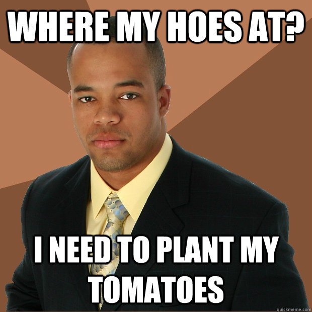Where my hoes at? i need to plant my tomatoes - Where my hoes at? i need to plant my tomatoes  Successful Black Man