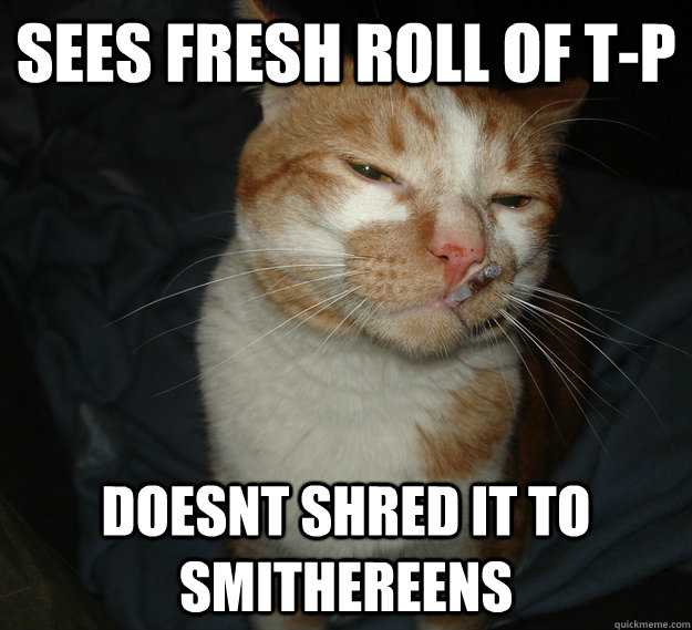 sees fresh roll of t-p doesnt shred it to smithereens  - sees fresh roll of t-p doesnt shred it to smithereens   Cool Cat Craig