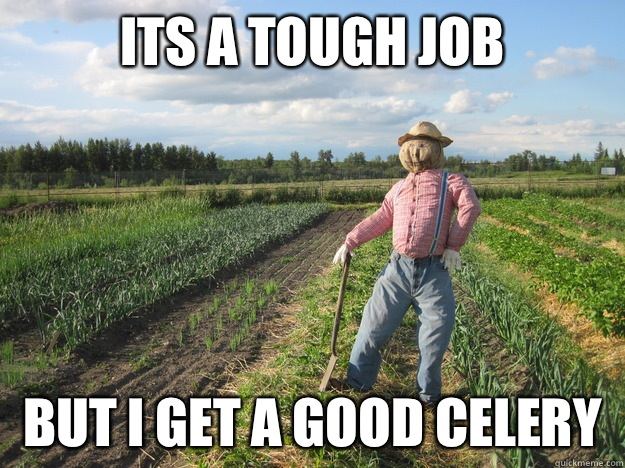 Its a tough job But i get a good celery  Scarecrow