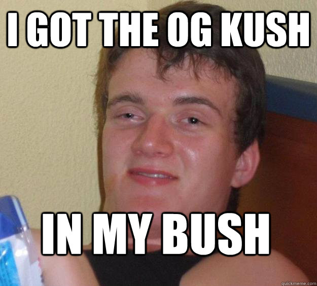 i got the OG kush in my bush - i got the OG kush in my bush  10 Guy