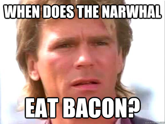 When does the narwhal eat bacon?  Confused macgyver