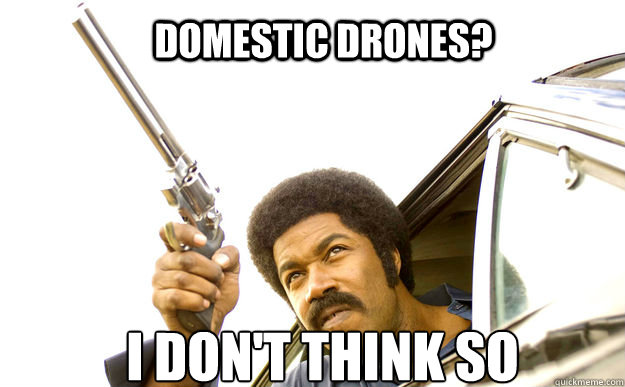 Domestic Drones I Dont Think So