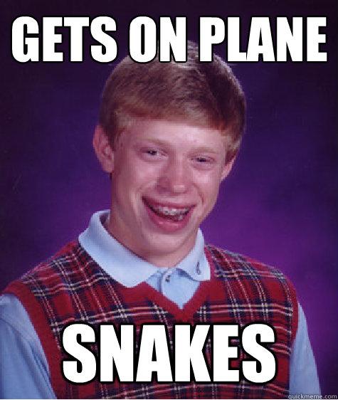 Gets on plane snakes - Gets on plane snakes  Bad Luck Brian