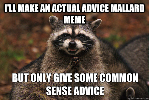 I'll make an actual advice mallard meme But only give some common  sense advice - I'll make an actual advice mallard meme But only give some common  sense advice  Insidious Racoon 2