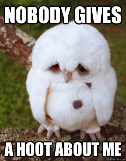 nobody gives A hoot about me  - nobody gives A hoot about me   Depressed Owl