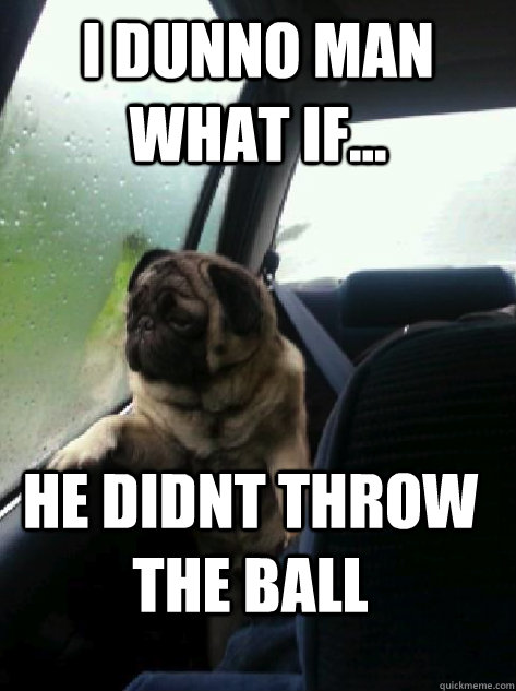 i dunno man what if... he didnt throw the ball  - i dunno man what if... he didnt throw the ball   Introspective Pug