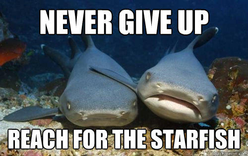never give up reach for the starfish  Compassionate Shark Friend