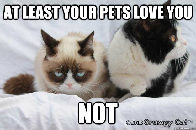 at least your pets love you not at least your pets love you not grumpy - Grumpy Cat Valentine