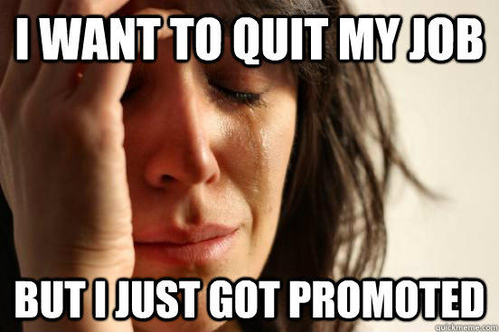 I WANT TO QUIT MY JOB  But I just got promoted  - I WANT TO QUIT MY JOB  But I just got promoted   First World Problems