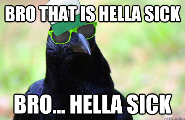 Bro That Is Hella Sick Bro Hella Sick Overused Catchphrase Crow