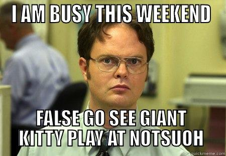 Giant Kitty - I AM BUSY THIS WEEKEND FALSE GO SEE GIANT KITTY PLAY AT NOTSUOH Dwight