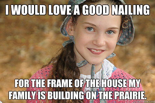 i would love a good nailing for the frame of the house my family is building on the prairie. - i would love a good nailing for the frame of the house my family is building on the prairie.  Innocent Pioneer Gal