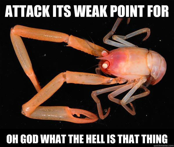 ATTACK ITS WEAK POINT FOR OH GOD WHAT THE HELL IS THAT THING - ATTACK ITS WEAK POINT FOR OH GOD WHAT THE HELL IS THAT THING  Terrifying Lobster