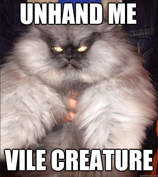 Unhand me  Vile Creature  Evil Cat