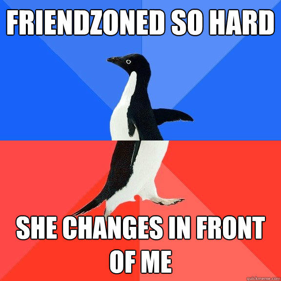 friendzoned so hard she changes in front of me - friendzoned so hard she changes in front of me  Socially Awkward Awesome Penguin