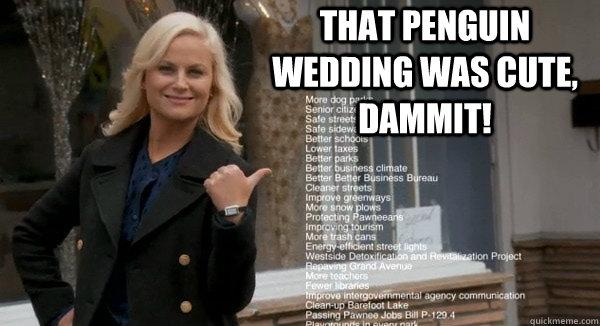 That penguin wedding was cute, dammit!