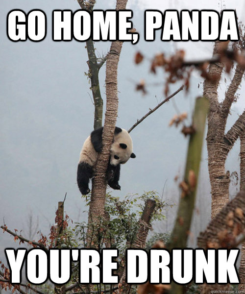 Go home panda you 39 re drunk cant hold his liquor quickmeme for How much can i save building my own house