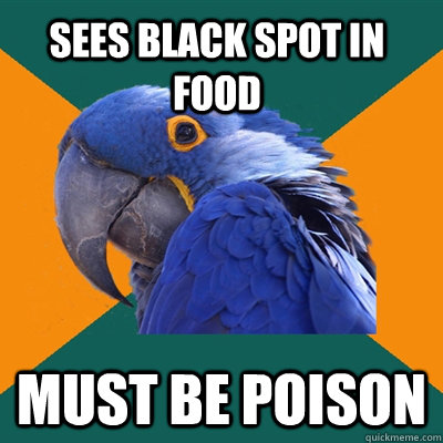 sees black spot in food Must be poison - sees black spot in food Must be poison  Paranoid Parrot