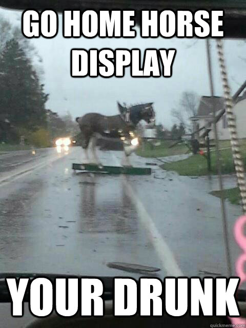 Go Home Horse You Re Drunk
