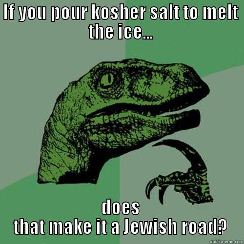 IF YOU POUR KOSHER SALT TO MELT THE ICE... DOES THAT MAKE IT A JEWISH ROAD? Philosoraptor