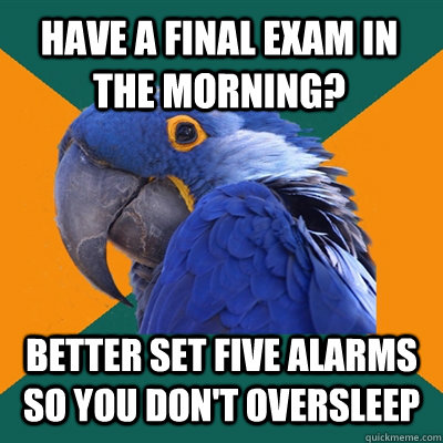 HAVE A FINAL EXAM IN THE MORNING? BETTER SET FIVE ALARMS SO YOU DON'T OVERSLEEP - HAVE A FINAL EXAM IN THE MORNING? BETTER SET FIVE ALARMS SO YOU DON'T OVERSLEEP  Paranoid Parrot