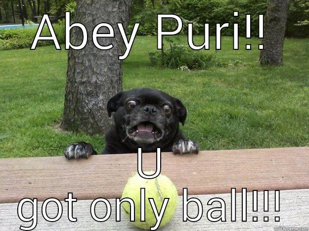 ABEY PURI!! U GOT ONLY BALL!!! Berks Dog