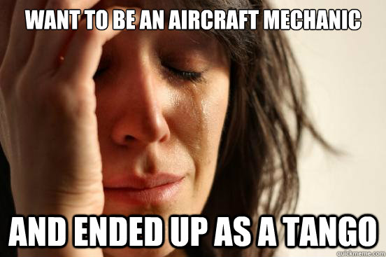 4a8c184498f0c6447b6236dcd9bea600614cf9fb801a29f5bfb7cc713460dd1b want to be an aircraft mechanic and ended up as a tango first,Airplane Mechanic Funny Memes