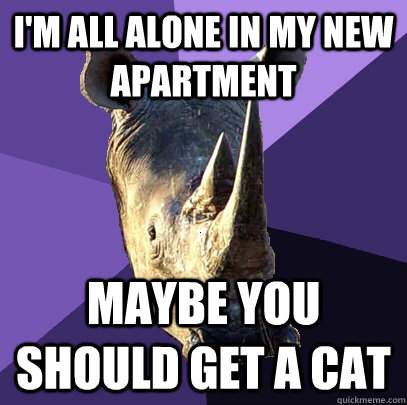 I'm all alone in my new apartment Maybe you should get a cat  Sexually Oblivious Rhino