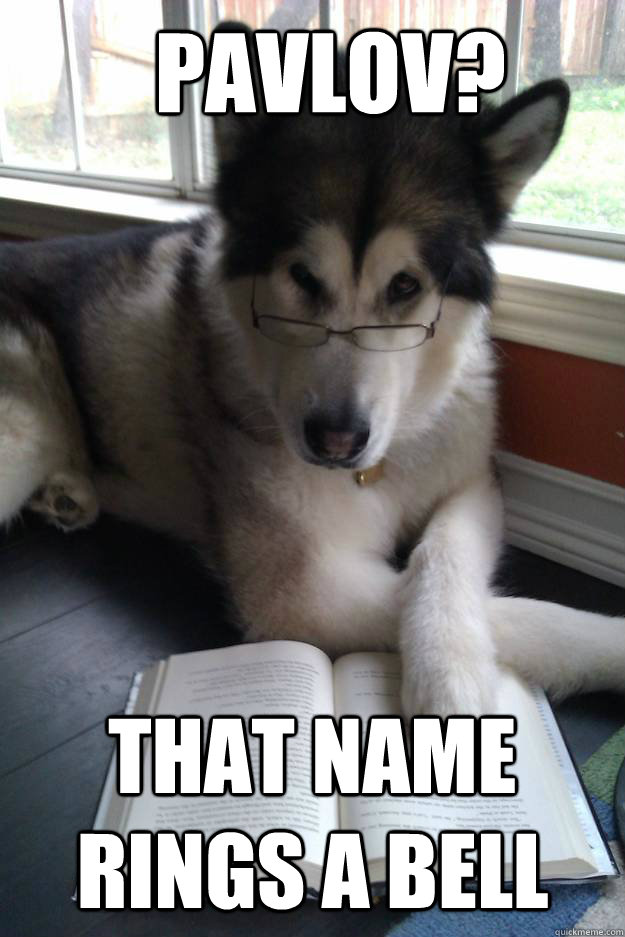 Pavlov? That name rings a bell - Pavlov? That name rings a bell  Condescending Literary Pun Dog