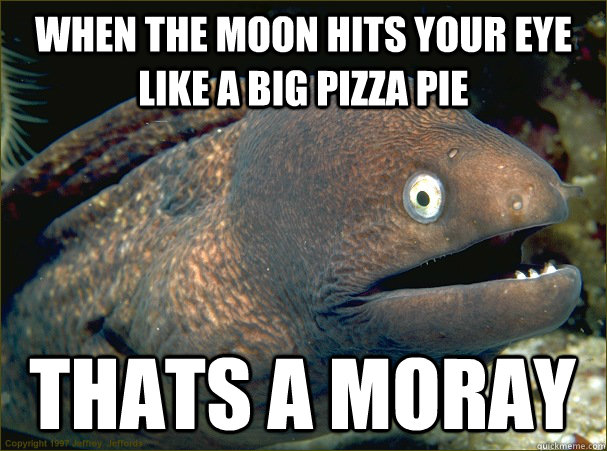 When the moon hits your eye like a big pizza pie thats a moray - When the moon hits your eye like a big pizza pie thats a moray  Bad Joke Eel