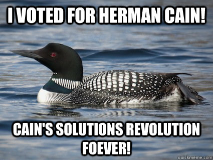 I voted For Herman Cain! Cain's Solutions Revolution Foever!