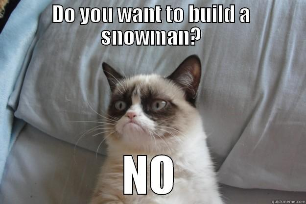 DO YOU WANT TO BUILD A SNOWMAN? NO Grumpy Cat