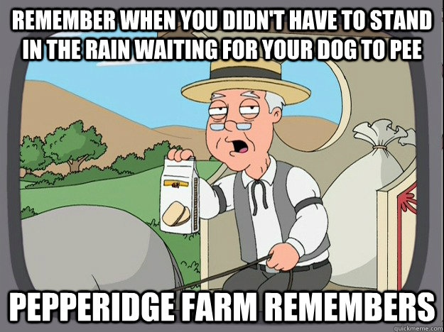 remember when you didn't have to stand in the rain waiting for your dog to pee pepperidge Farm remembers - remember when you didn't have to stand in the rain waiting for your dog to pee pepperidge Farm remembers  Pepridge Farm