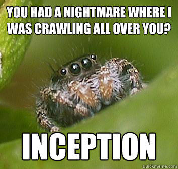 You had a nightmare where i was crawling all over you? INCEPTION - You had a nightmare where i was crawling all over you? INCEPTION  Misunderstood Spider