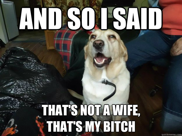 And so I said  That's not a wife,  that's my bitch - And so I said  That's not a wife,  that's my bitch  Drunken Joke Dog