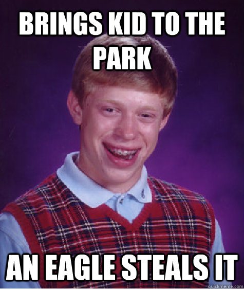 Brings Kid To The Park An Eagle Steals It Bad Luck Brian