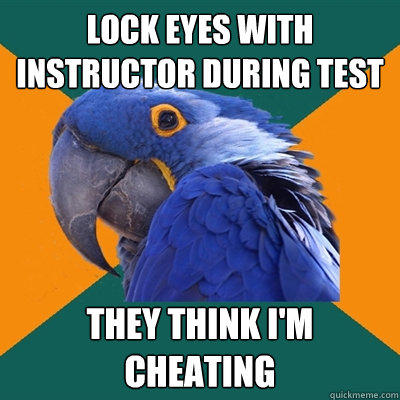 Lock eyes with instructor during test They think i'm cheating  Paranoid Parrot