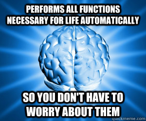 Performs all functions necessary for life automatically so you don't have to worry about them - Performs all functions necessary for life automatically so you don't have to worry about them  Good Guy Brain