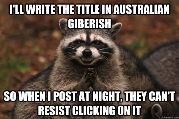 I'll write the title in Australian giberish So when i post at night, they can't resist clicking on it - I'll write the title in Australian giberish So when i post at night, they can't resist clicking on it  Evil Plotting Raccoon